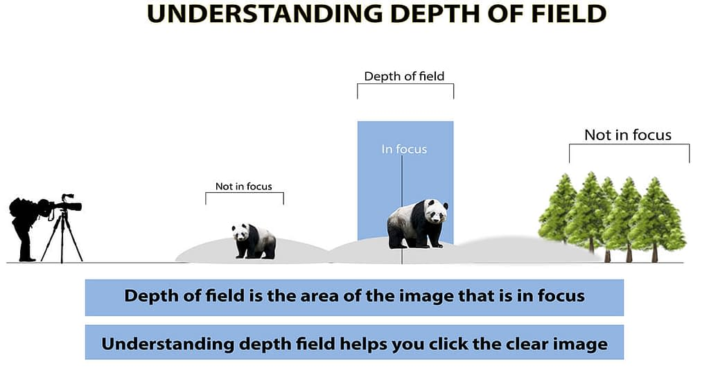what depth of field in photography